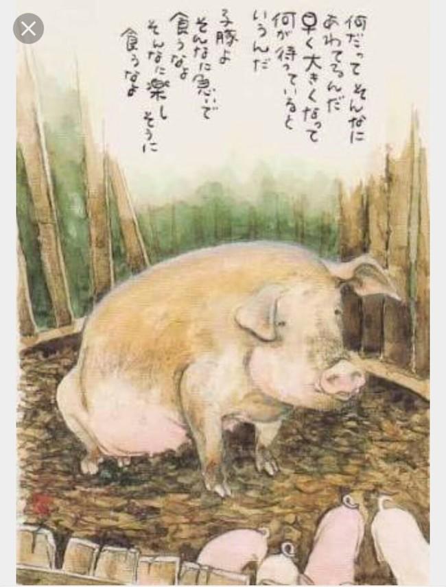 星野富弘の画像 p1_22