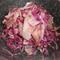 大根と紫キャベツ めかぶの和風サラダ