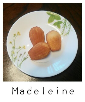 本格マドレーヌ。ハチミツ風味