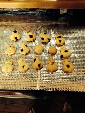 簡単!クランベリーのクッキー