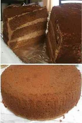 チョコレート スポンジケーキ
