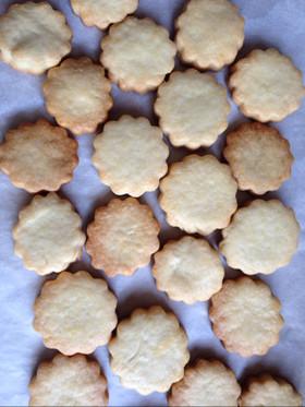 レアチーズケーキ用ボトムクッキー♡