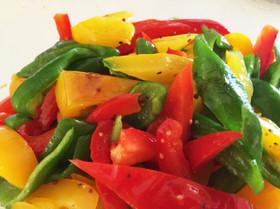 ピーマンのマリネ レシピ!人気の作り方10選