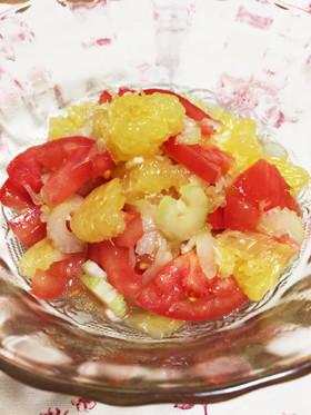 グレープフルーツとセロリ、トマトのサラダ