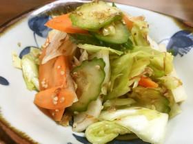 野菜のたっぷり浅漬け 夏のあれ始めました