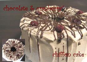 チョコレート&クランベリーシフォンケーキ