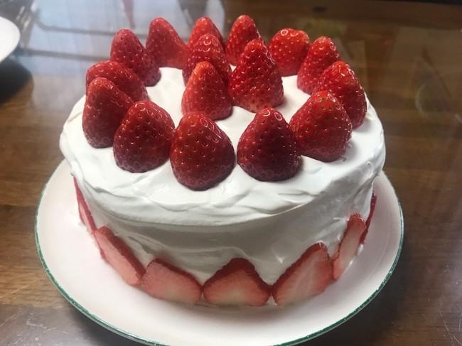 スポンジ ケーキ 保存