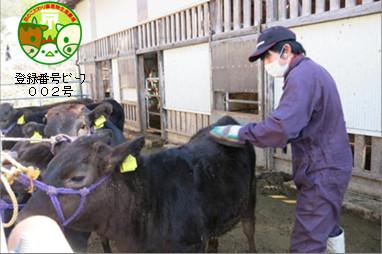 京のこだわり畜産物生産農場】い...