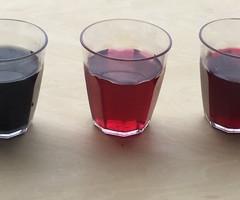 冷凍ブルーベリーをお酢につけるとどうなる?
