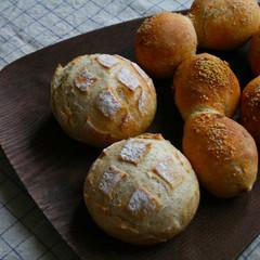自家製酵母でハードパン!シンプルなブール、ドライトマトの爽やかなパン
