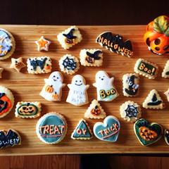 ハロウィン前の練習!かぼちゃのプリンもどきとアイシングクッキー作り♪