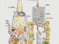 料理レッスン写真 - 【焼酎レッスン】焼酎をもっと楽しむための知識と料理のマリアージュ体験会