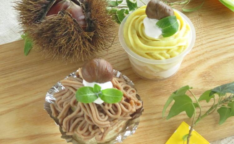 ☆乳製品・白砂糖不使用☆低カロリーのモンブランケーキ2種類♬ランチ付☆