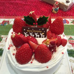 そのままパーティーへ★超ミルキーなクリームのクリスマスケーキ★8人分