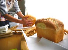 料理レッスン写真 - 『黄金比率』のふんわりミルキー食パン!【特製ランチ付】