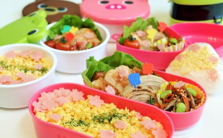 お弁当箱付!桜舞う彩り弁当のコツ+ランチ