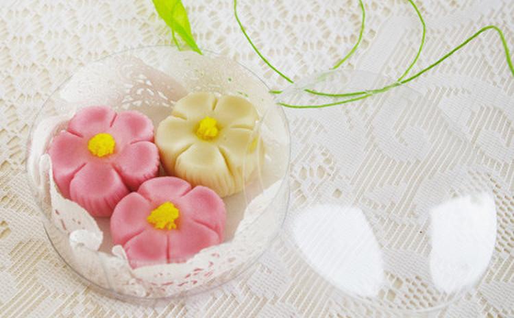 春の風を感じて!練りきり和菓子で『なでしこ』を作りましょ〜