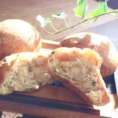 【持ち帰り生地付】ワインと一緒に♪天然酵母のベーコンとオリーブのパン