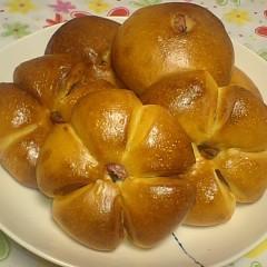 【パン】~桜あんぱん~2種類の成形で食感の違いを学ぼう!