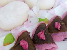 料理レッスン写真 - 【ふわふわ白パン&桜もち】