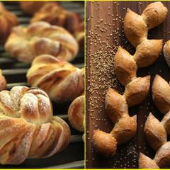 「ハード系ツイストレモンあんパン」&「セサミエピフランス」