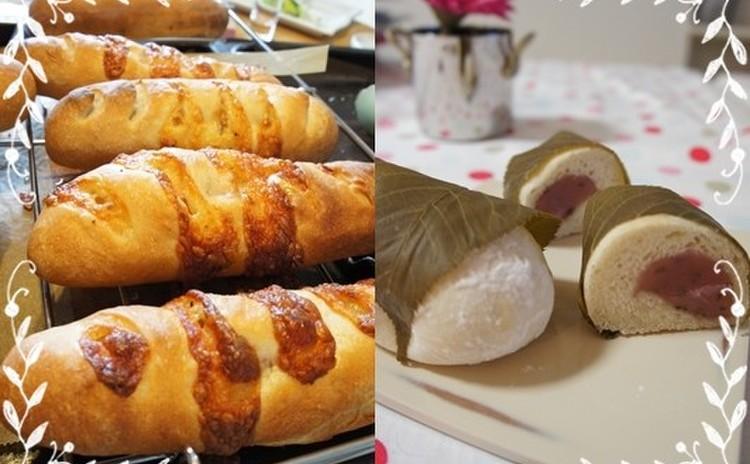 小麦酵母でつくる 桜ベーコンと とろけるチーズのパンとおまけの桜パン