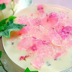 ふわふわ〜♪なめらか〜♪『桜のムース♪』