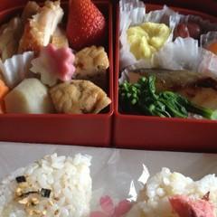 新・春よ恋♪お花見弁当&新生活のお弁当に!何種類詰められるかワクワク