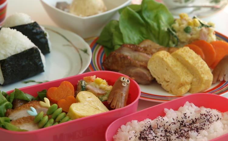 お弁当箱付き!彩りの良いお弁当の基礎とコツ♪