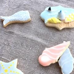 中級用基本 海辺デザイン アイシングクッキー