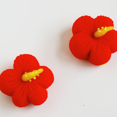夏らしい花 練りきりでハイビスカス