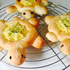 夏休み親子パン教室★可愛いカメのお惣菜パンを作ろう!《自由研究にも》
