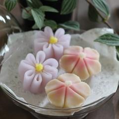 秋のお花2品!「まさり草」(餅生地)と「なでしこ」(練り切り製)