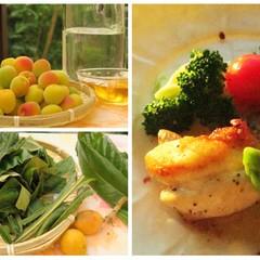 一日限定!旬のフルーツで作る果実酒のお持ち帰り&「ガレット」deランチ