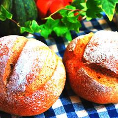 【天然酵母に最適な季節です!】ホシノ酵母で作る美味しいカンパーニュ