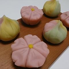 おうちでお花見しませんか?【和菓子】「練り切り~桜&春の山~」を作ろう