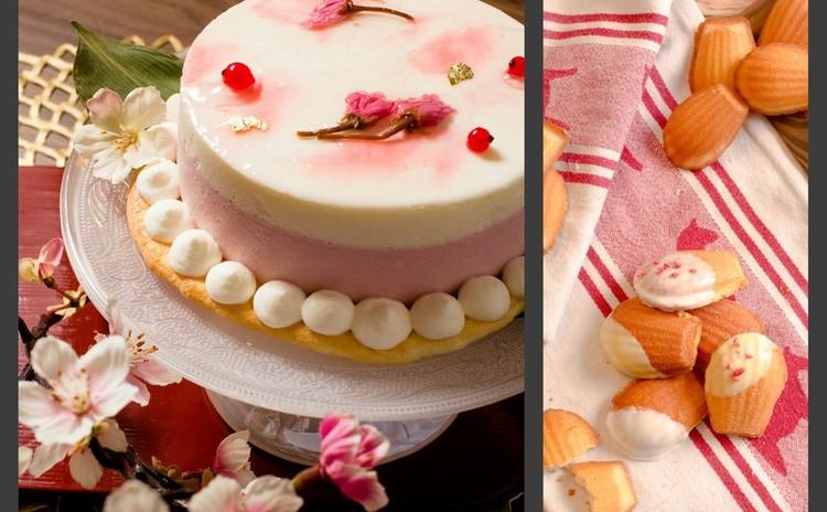 春爛漫!桜のチーズケーキ と 基本のマドレーヌ