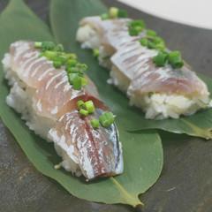 魚をさばく!第三弾は鯵!築地直送1人1尾さばいて鯵寿司に挑戦&砂肝料理
