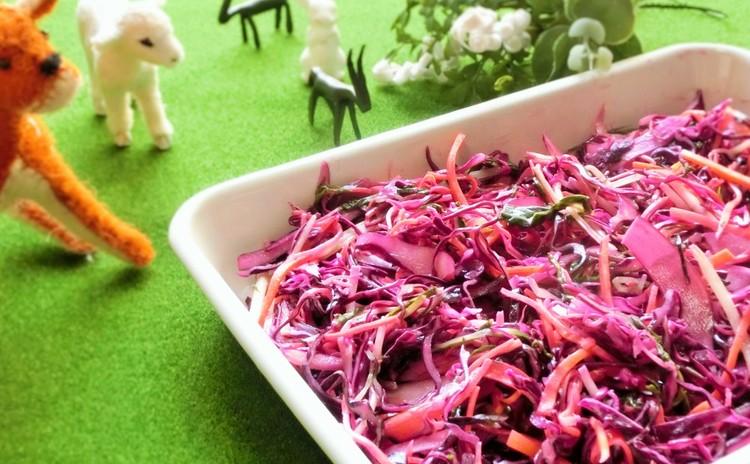 彩り野菜のあっさりコールスロー