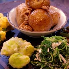 初夏の食材 基本と応用 8品そら豆かき揚おかひじき和え物、あさり卵焼き