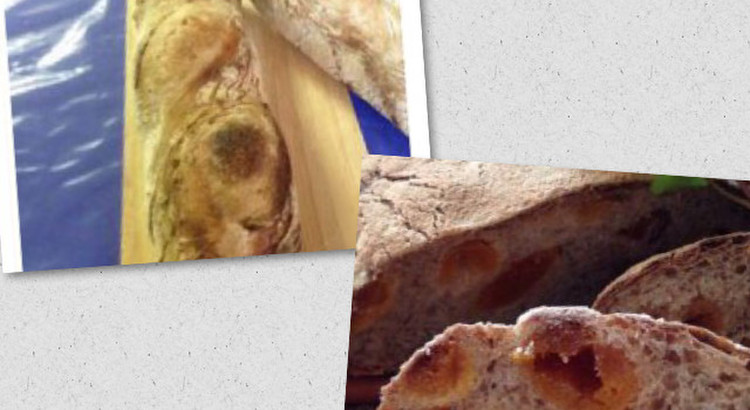 自家製酵母のバゲットと高加水で作るアプリコットの本格的パン
