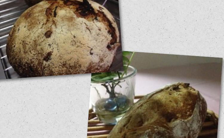 自家製酵母のハニージンジャーライブレッドと高加水のパン オ ノア