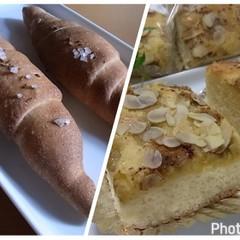 お菓子のようなブレヒクーヘンとドイツの塩パンのザルツシュタンゲン