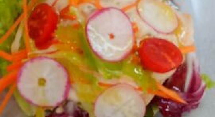 若鶏胸肉と彩り野菜のサラダ仕立て      トンナートソース