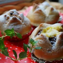 夏限定!冷やしクリームパンを作ろう(2種類)≪白神こだま酵母レッスン≫