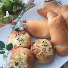 【お土産&ランチ付き】たっぷりバター(#^^#)塩パン&チーズブレッド