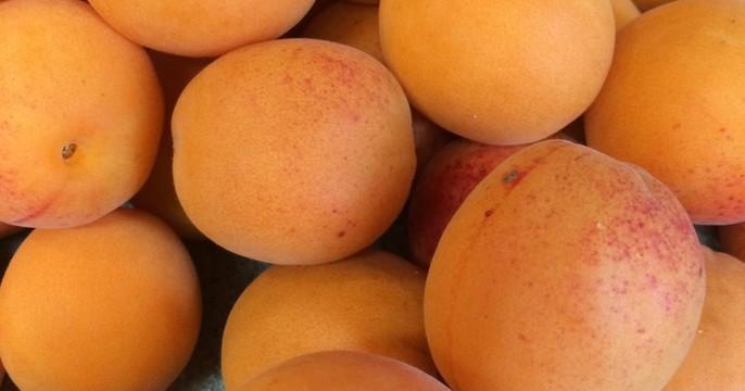 杏のシロップ漬け&杏ジャム&パスタ&なすのフリット&キノコ焼き