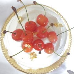 夏休みは親子でショートケーキにチャレンジ!!