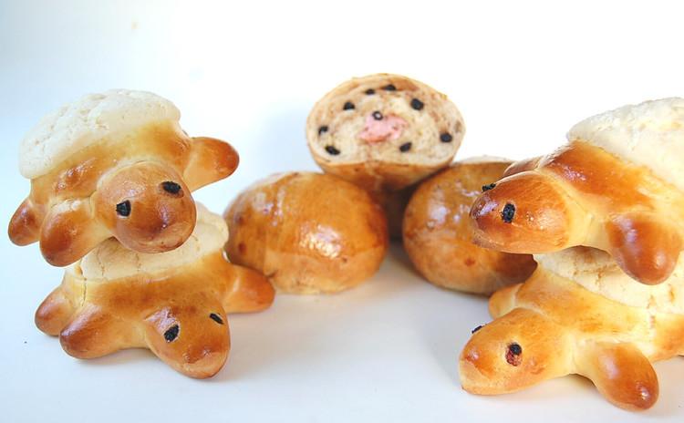 【親子パン教室】(超初級)カメロンパンとフルーツグラノーラ 2種8個