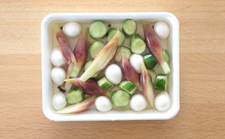 みょうが、うずらの卵、きゅうりのピクルス